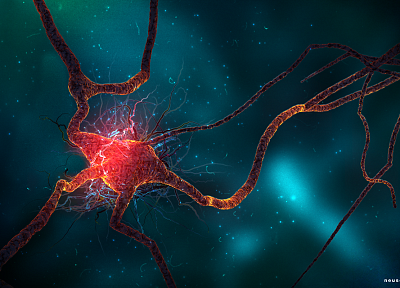 science fiction, neuroscience, synapse, neurons - random desktop wallpaper