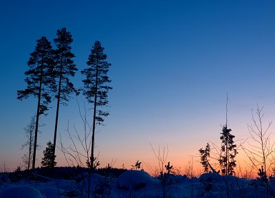 sunset, winter, forests, blue skies - desktop wallpaper