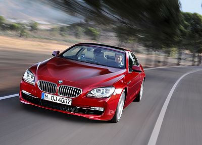 BMW, trees, cars, men, BMW 6 Series - desktop wallpaper