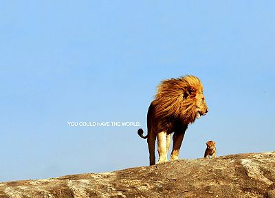 mountains, nature, animals, rocks, cubs, inspirational, kittens, lions, skyscapes, motivational posters - related desktop wallpaper