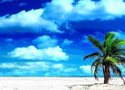 clouds, sand, islands, palm trees, beaches - related desktop wallpaper