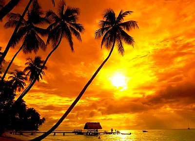 sunset, silhouettes, tropical, palm trees, huts - random desktop wallpaper