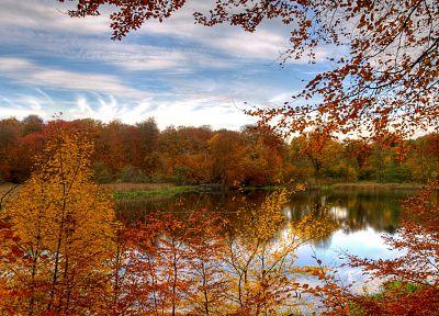 landscapes, nature, autumn, forests - related desktop wallpaper