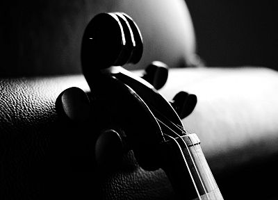music, violins, monochrome - desktop wallpaper
