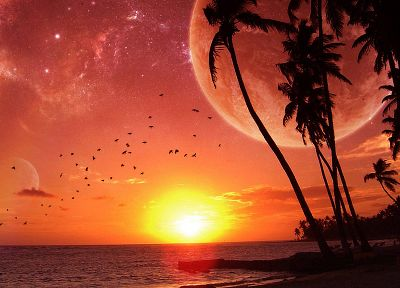 sunset, ocean, Moon, palm trees, beaches - random desktop wallpaper