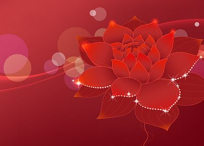 abstract, nature, red, flowers - desktop wallpaper
