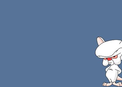 Pinky and the Brain - desktop wallpaper