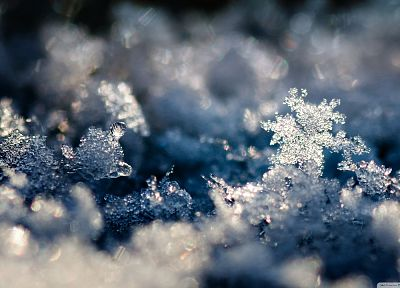 ice, snowflakes, slush - random desktop wallpaper
