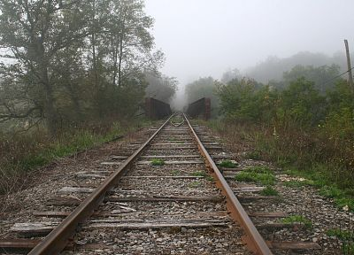 nature, trains, fog, railroad tracks, vehicles - related desktop wallpaper