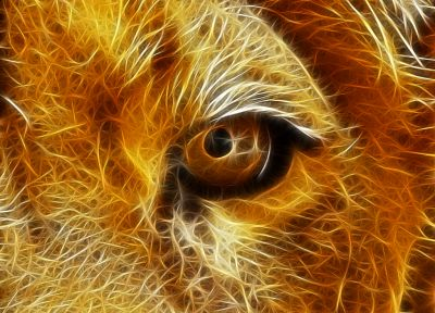 Fractalius, lions - desktop wallpaper