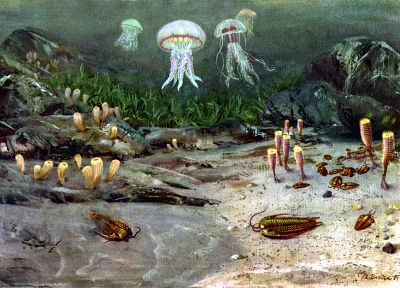 paintings, jellyfish, sea anemones, prehistoric, sealife, Zdenek Burian - related desktop wallpaper