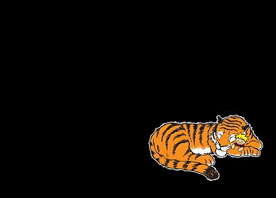 Calvin and Hobbes, black background - desktop wallpaper