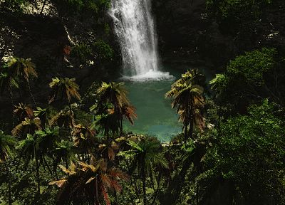 tropical, paradise, palm trees, waterfalls - related desktop wallpaper