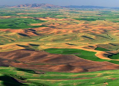 fields, Washington, Palouse - random desktop wallpaper