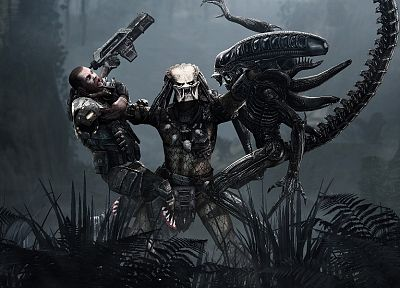 video games, predator, US Marines Corps, Aliens vs Predator movie, battles, Alien - related desktop wallpaper