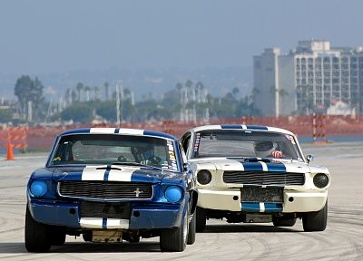 cars, vehicles, Ford Mustang, Shelby Mustang - related desktop wallpaper