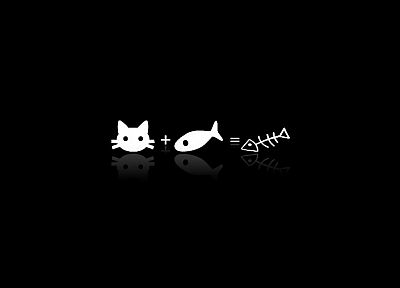 cats, fish, black background - related desktop wallpaper
