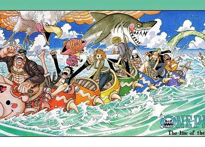 One Piece (anime), Nico Robin, Roronoa Zoro, Franky (One Piece), Tony Tony Chopper, Monkey D Luffy, Nami (One Piece), Usopp, Sanji (One Piece) - related desktop wallpaper