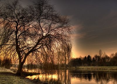 sunset, trees, HDR photography - desktop wallpaper