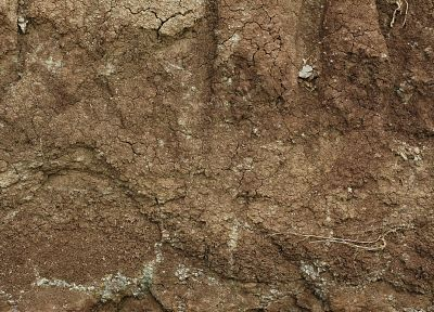 textures, soil - random desktop wallpaper