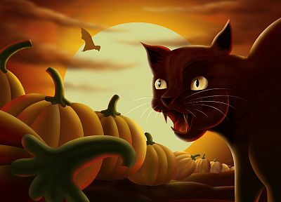 cats, Halloween, Moon, pumpkins - related desktop wallpaper