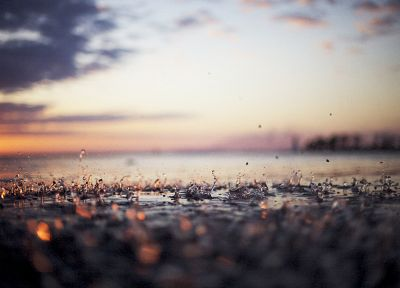 water, nature, rain, macro, depth of field - related desktop wallpaper
