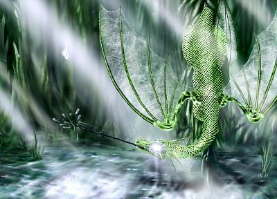 fantasy, dragons, 3D - related desktop wallpaper