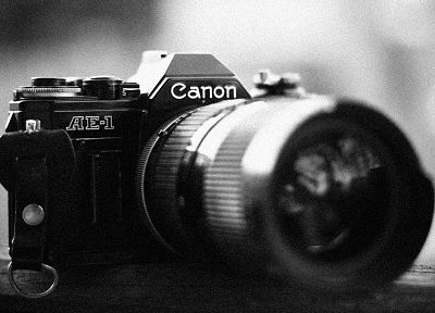cameras, grayscale, Canon - desktop wallpaper
