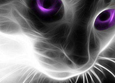 cats, Fractalius - related desktop wallpaper