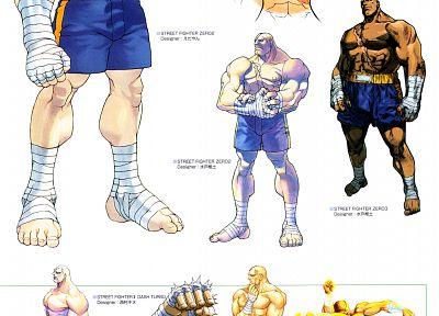 Street Fighter, Sagat, street fighter alpha - random desktop wallpaper