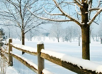 winter, snow, trees, fences - random desktop wallpaper