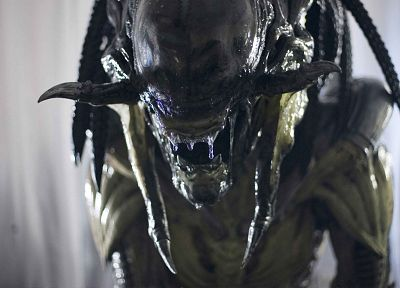 Aliens vs Predator movie, Aliens movie, Aliens - random desktop wallpaper