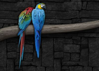 multicolor, birds, parrots, Scarlet Macaws, branches, Macaw, Blue-and-yellow Macaws - random desktop wallpaper