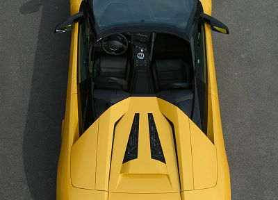 cars, vehicles, Lamborghini Murcielago - desktop wallpaper