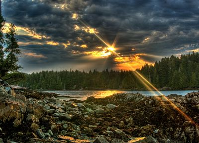 clouds, landscapes, nature, trees, forests, HDR photography - desktop wallpaper