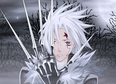 anime, D.Gray-man, Allen Walker - random desktop wallpaper