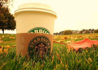 coffee, grass, Starbucks - random desktop wallpaper