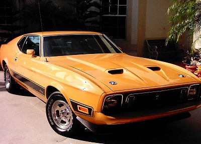 vehicles, Ford Mustang Mach 1, old car - related desktop wallpaper