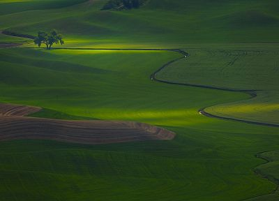 light, fields, hint, Washington - random desktop wallpaper