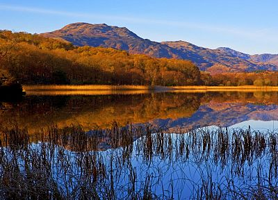 landscapes, nature, autumn, forests, lakes - related desktop wallpaper