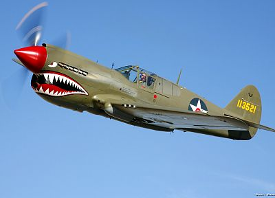 airplanes, P-40 - desktop wallpaper