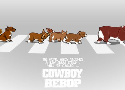 Cowboy Bebop, Corgi - desktop wallpaper
