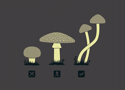drugs, funny, mushrooms, simple background - desktop wallpaper