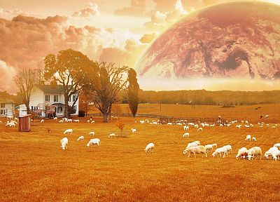 multicolor, animals, planets, orange, surreal, farms, ranch - related desktop wallpaper