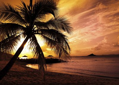sunset, clouds, landscapes, nature, sand, trees, paradise, palm trees, beaches - desktop wallpaper