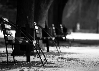 snow, trees, chairs - random desktop wallpaper