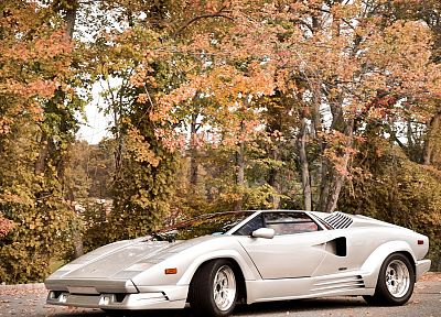 autumn, cars, Lamborghini Countach - random desktop wallpaper