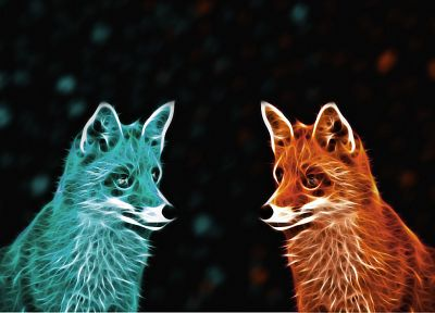 abstract, foxes - desktop wallpaper