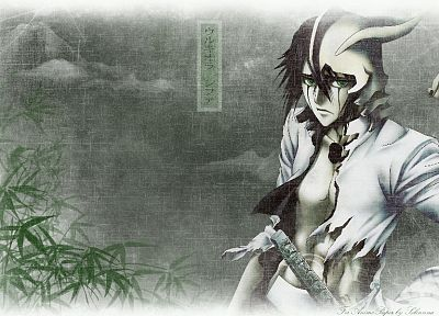 Bleach, Espada, Ulquiorra Cifer - random desktop wallpaper