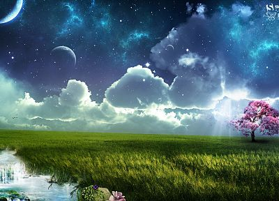 fantasy, clouds, trees, Moon, grass, skyscapes - related desktop wallpaper